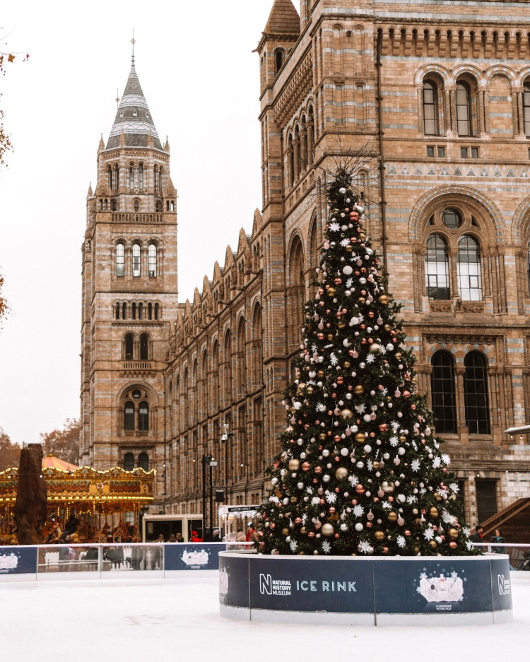 Ice Rink at Natural History Museum in London